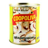 Մարինացված շամպինիոն  «Coopoliva» կտրտած 850գ