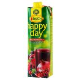 Հյութ «Happy Day» մուլտիմրգային 1լ