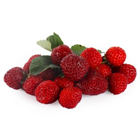Large wild strawberry kg